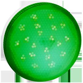 T5TG80ELC Ecola GX53   LED color  8,0W Tablet 220V Green Зеленый матовое стекло (композит) 28x74 1